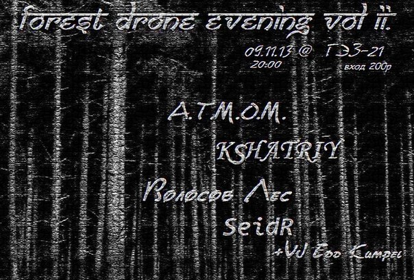 Forest Drone Evening Vol.II
